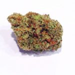 The Giving Tree of Denver medical marijuana
