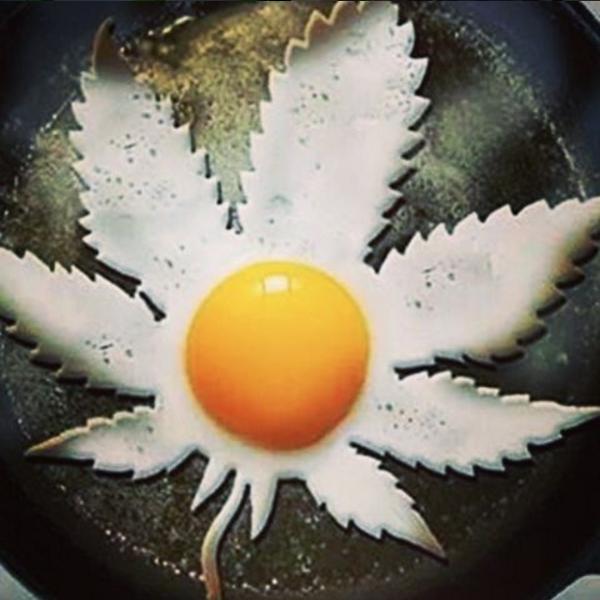 Marijuana Egg