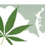 MetroX MD Medical Marijuana Evaluation Center   Review
