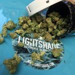 Alternative Medicine on Capitol Hill, Denver | Review