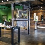 The Novel Tree Washington State | Review