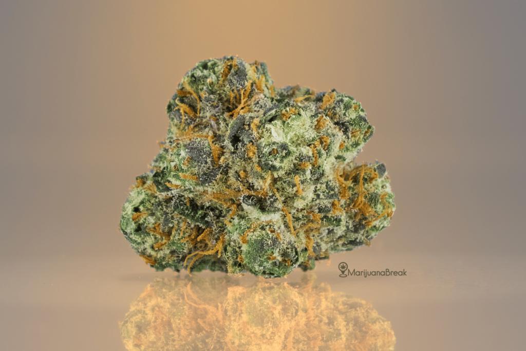 Bubba Kush Cannabis Strain