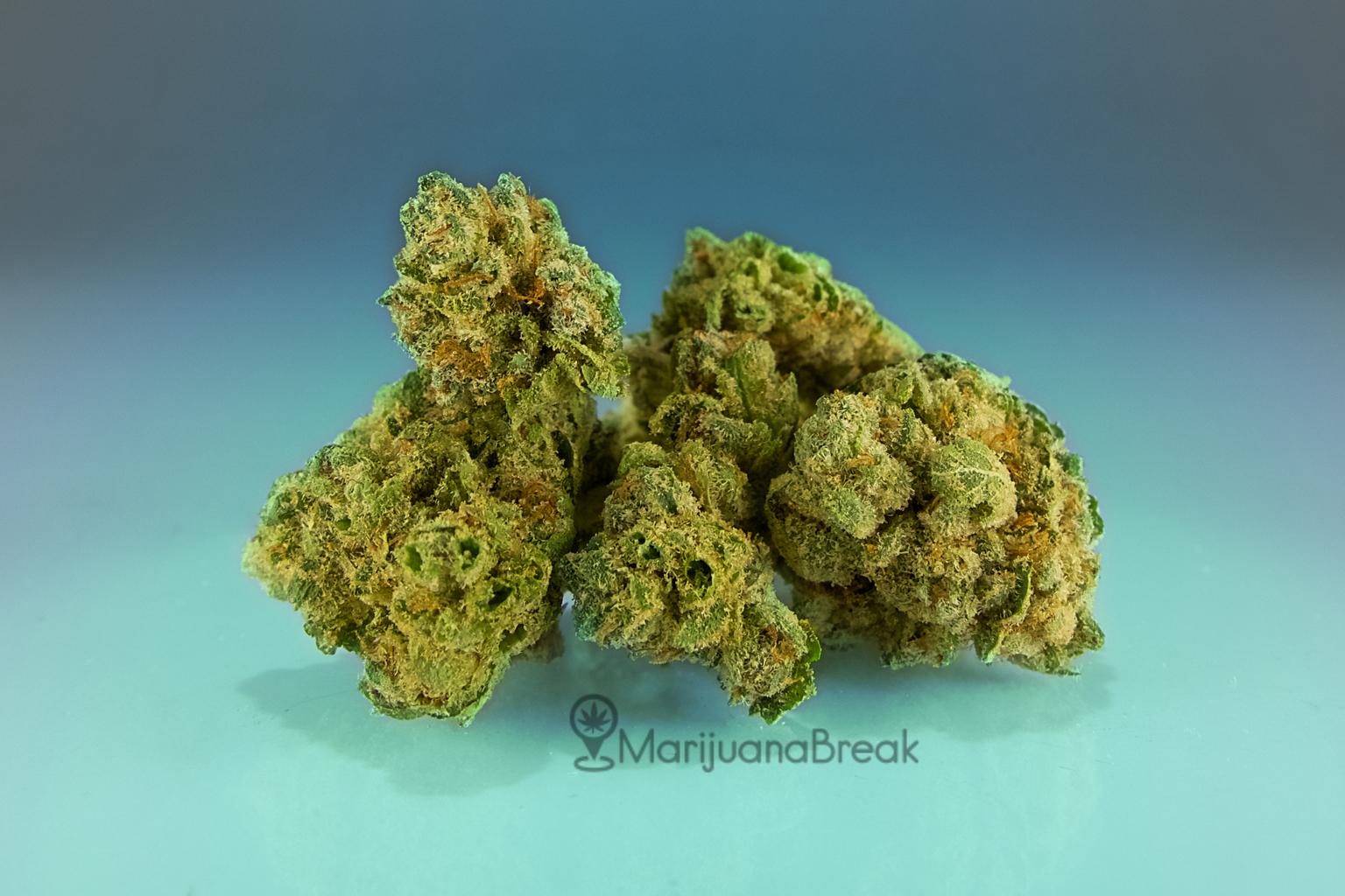 Gorilla Glue cannabis strain