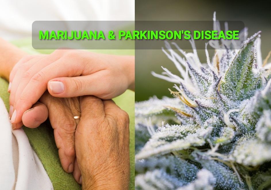 Marijuana and Parkinson's Disease