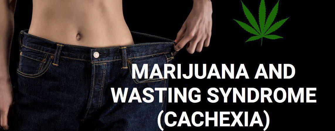 Marijuana and Wasting Syndrome