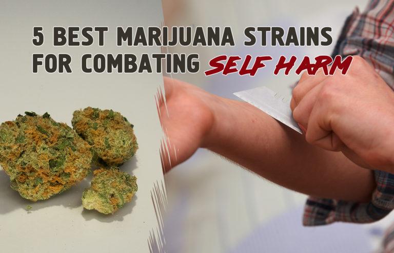 5 Best Marijuana Strains for Combating Self Harm
