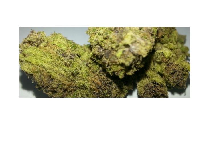 4 – Goo (The Marijuana Strain That Causes the Munchies)