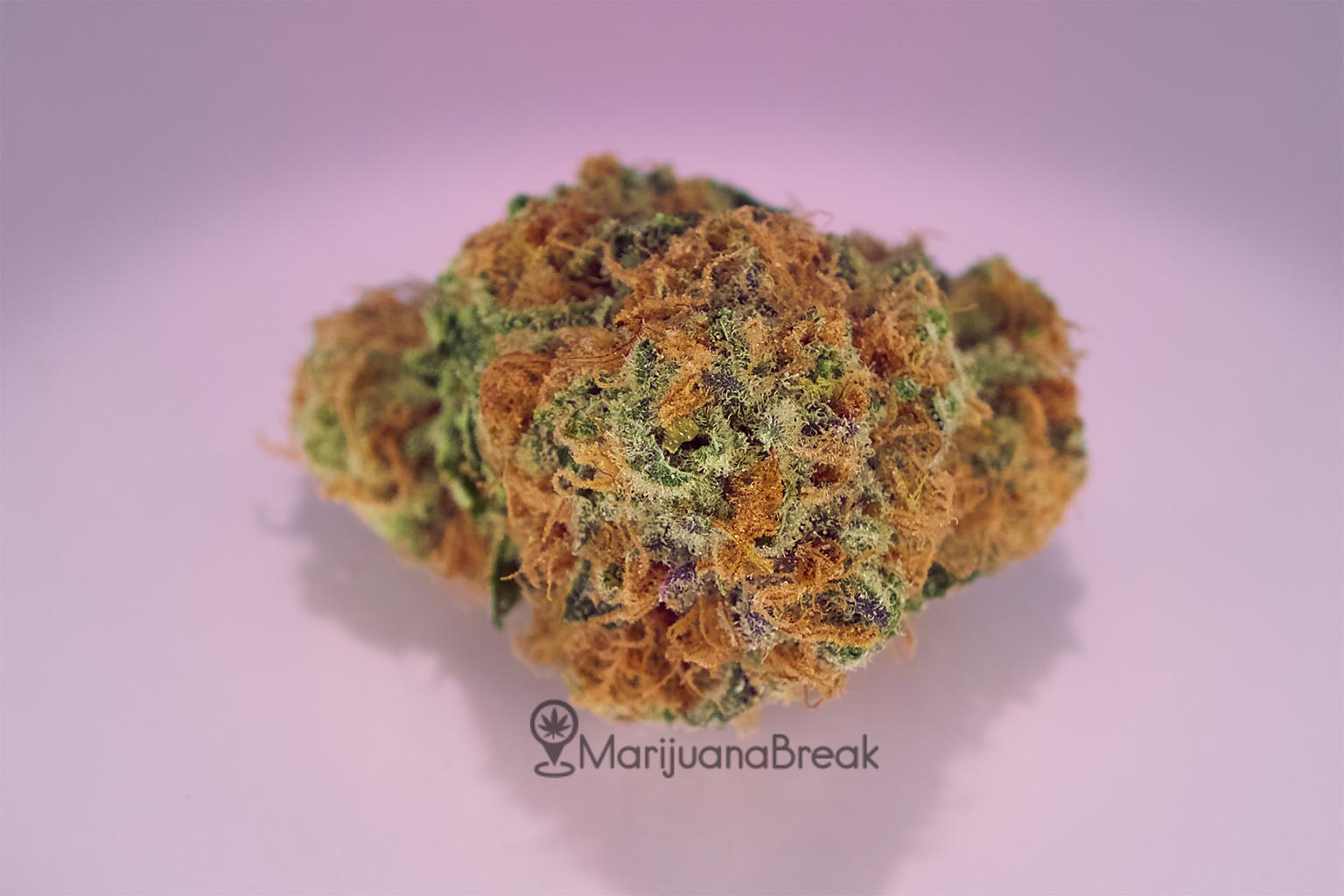 Strawberry Cough Marijuana Strain Review [2019]