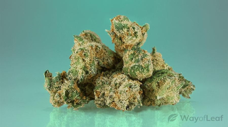 wol-article pic-best marijuana strains for depression