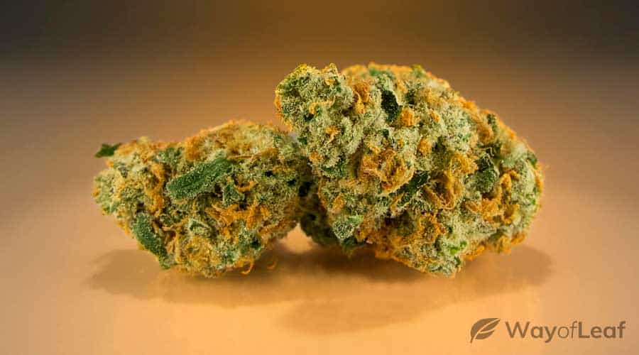 old-school-weed-strains
