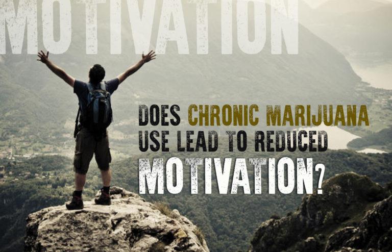 Does Chronic Marijuana Use Lead to Reduced Motivation? [ANSWERED]