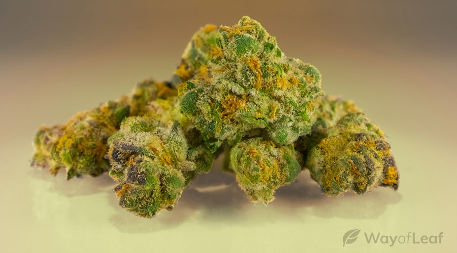 Great Indica Strains For a Workout