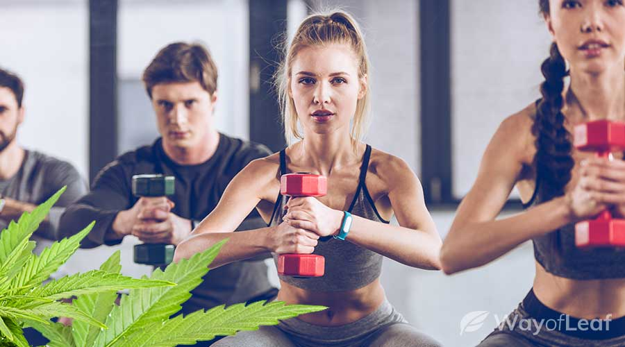 strains-for-working-out