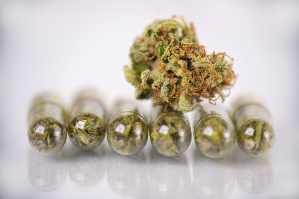 can you smoke weed on antibiotics