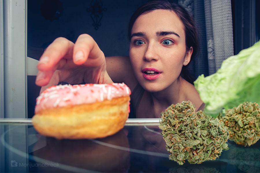 marijuana appetite stimulant