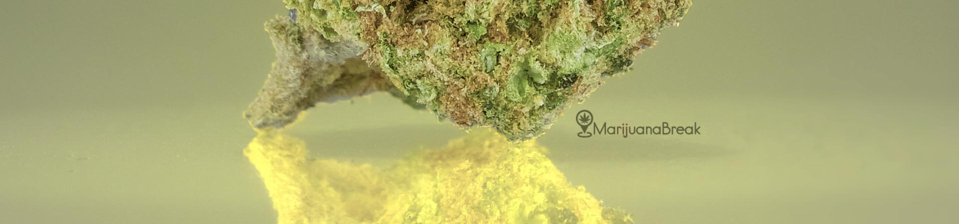 pineapple express cannabis strain review