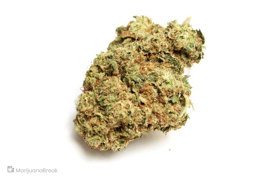 best marijuana strains in the world