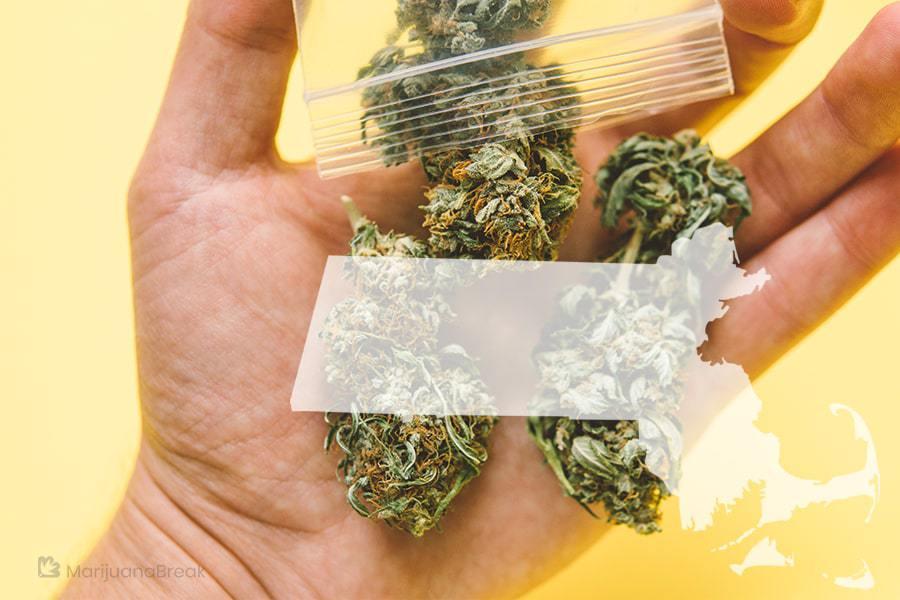 marijuana legal states
