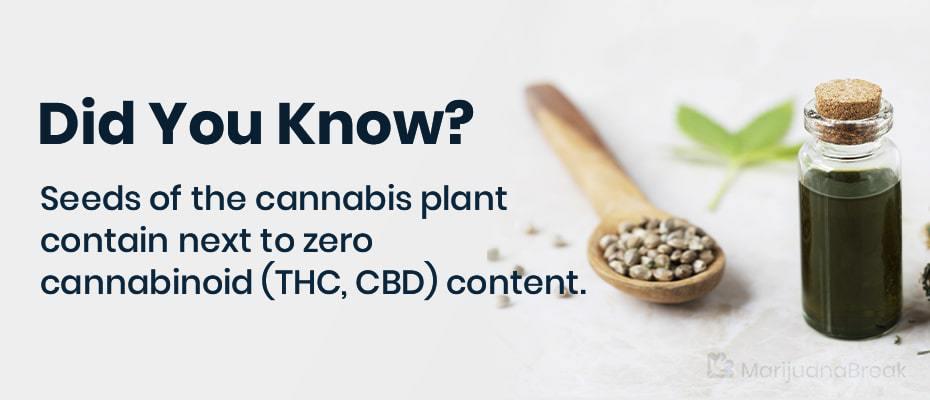 marijuanas seeds