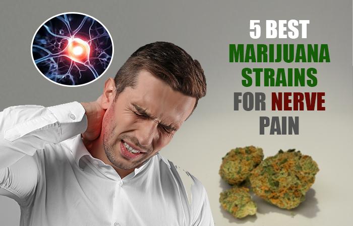 5 Best Marijuana Strains for Nerve Pain