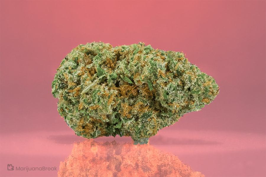 addiction and marijuana