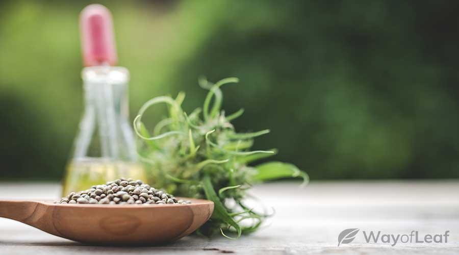 hemp-seed-nutrition-facts