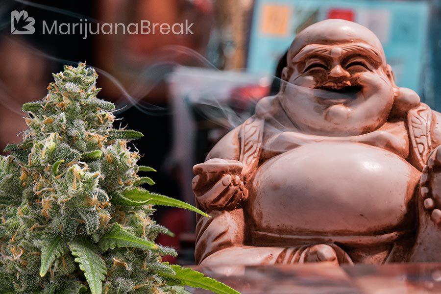 marijuana chinese medicine
