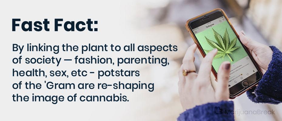 instagram cannabis multiple accounts