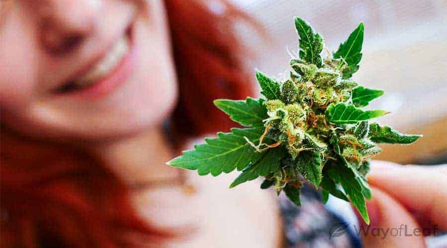 marijuana-long-term-effects