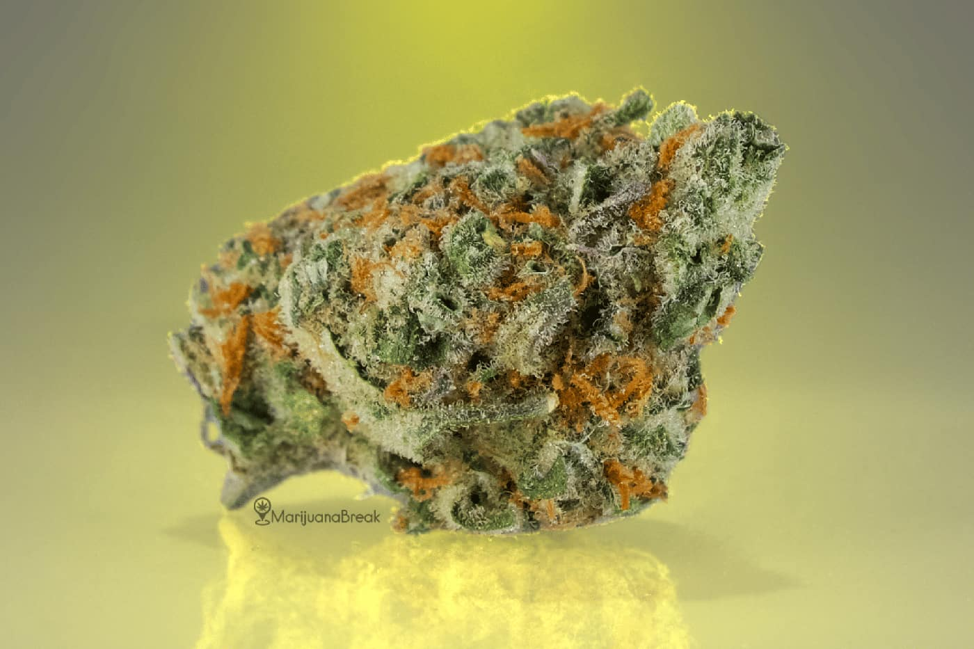 super lemon haze cannabis strain