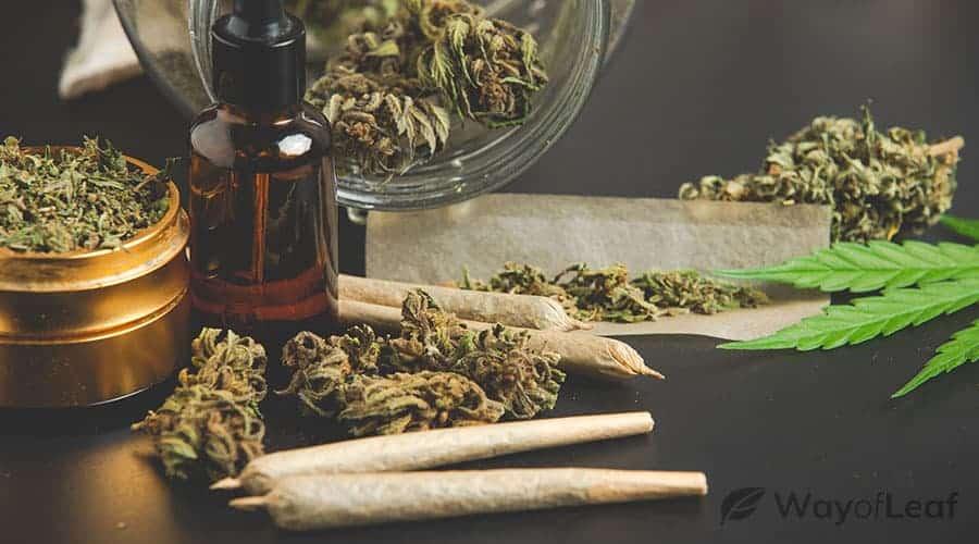 marijuana-overdose