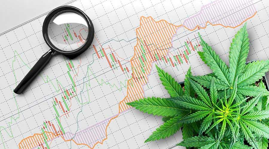 cannabis-feeding-chart