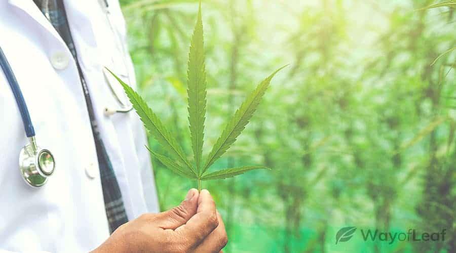 cannabis-alternative-medicine