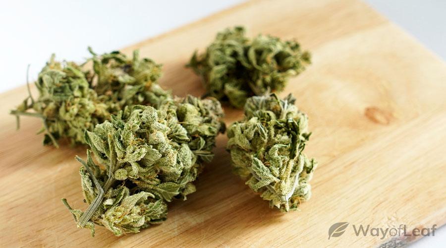 cannabis-strains-for-seizures