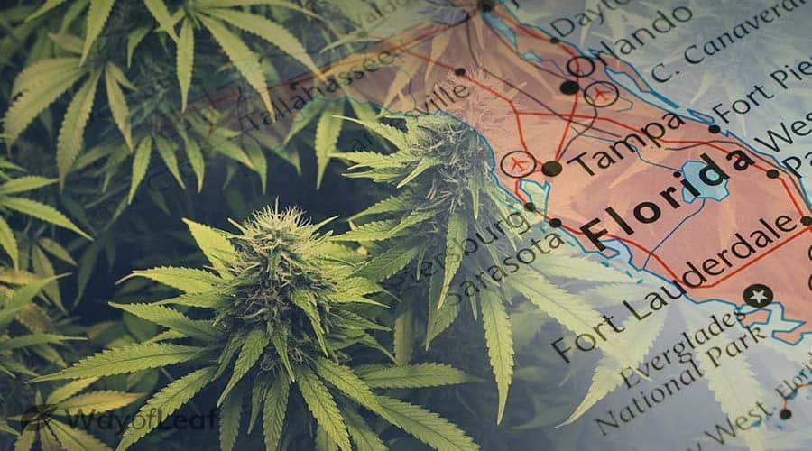 can you smoke medical marijuana in florida