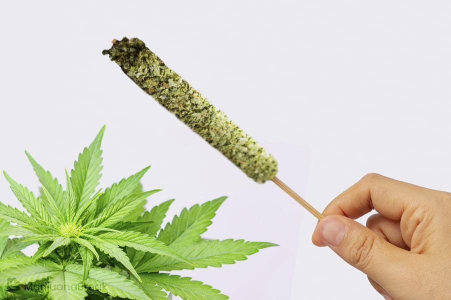 cannabis thai stick