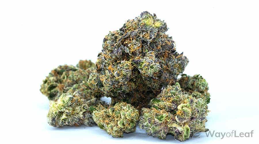 marijuana-holidays