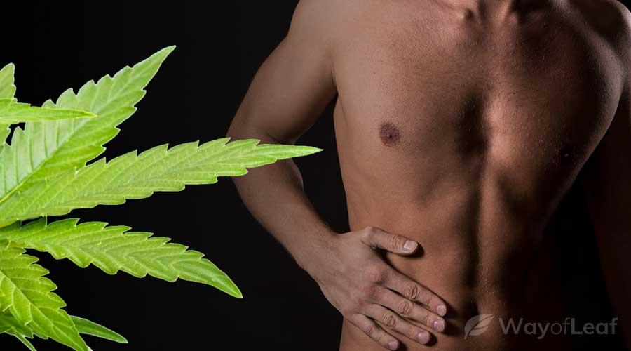 marijuana-effect-on-liver