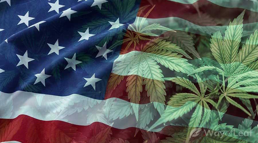 whats-next-for-recreational-marijuana