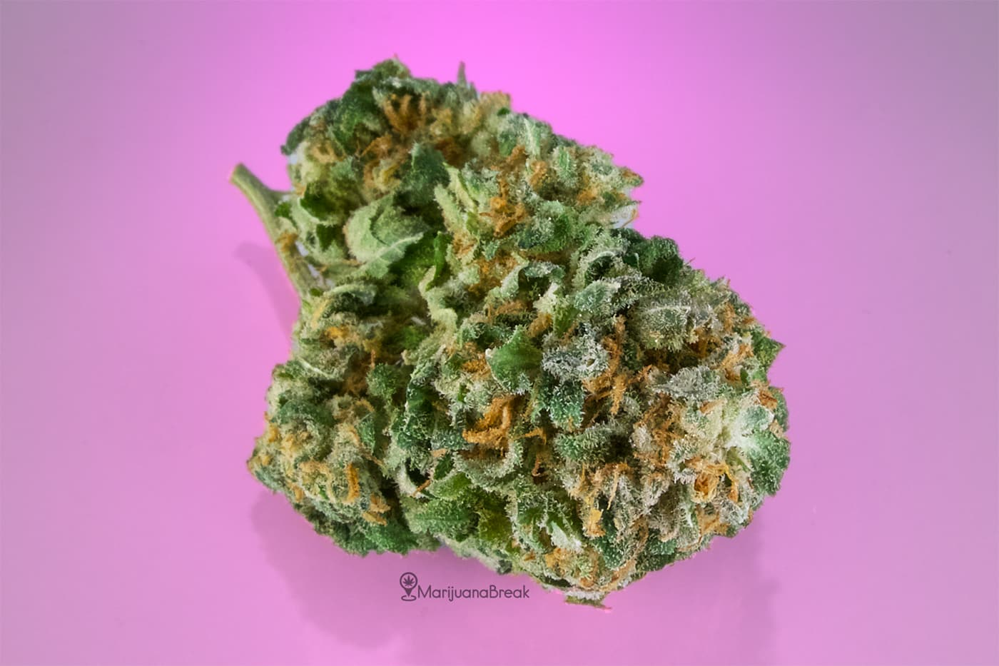 medical benefits of the bubblegum strain