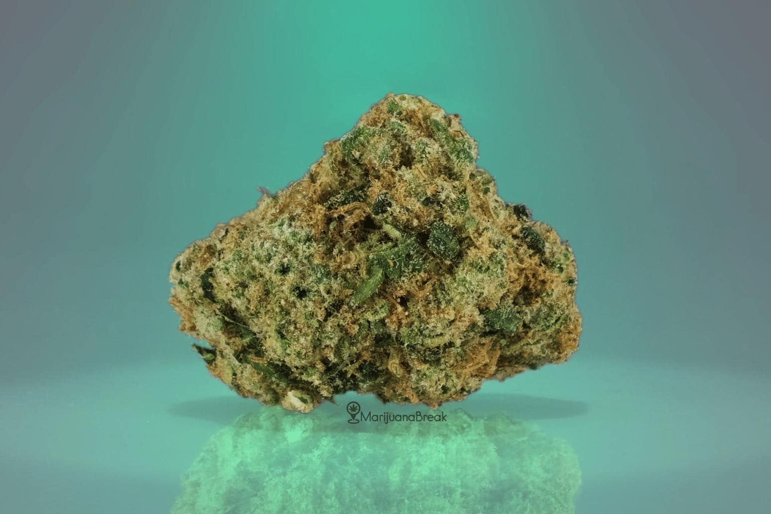 What is Chemdawg Cannabis?