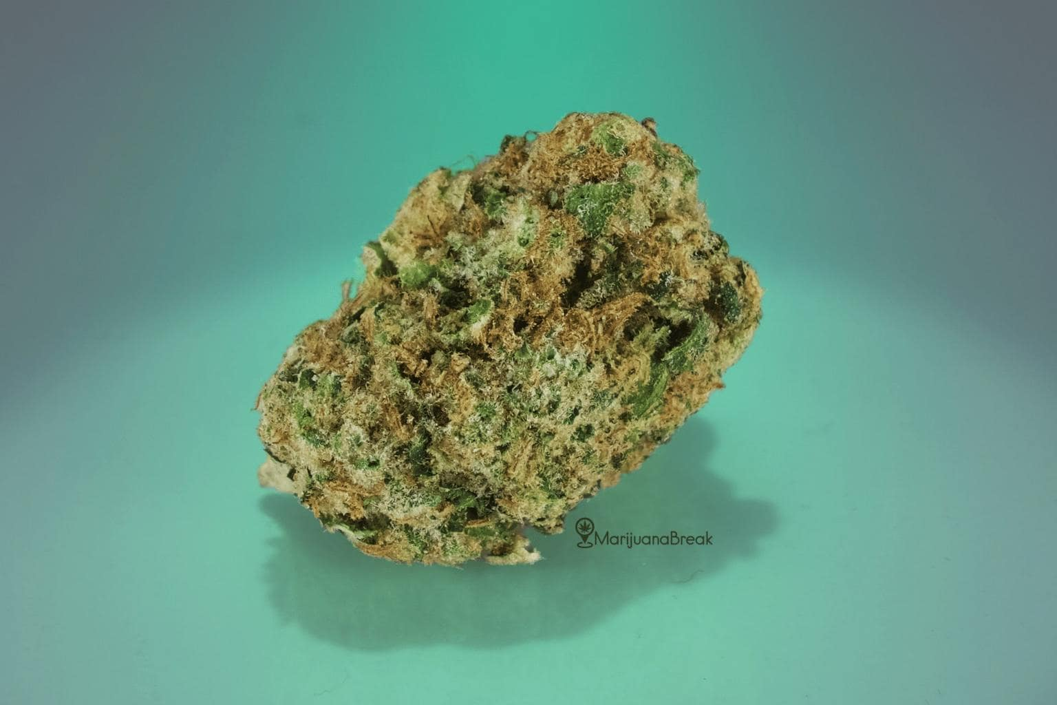 Medical Benefits of Chemdawg Strain