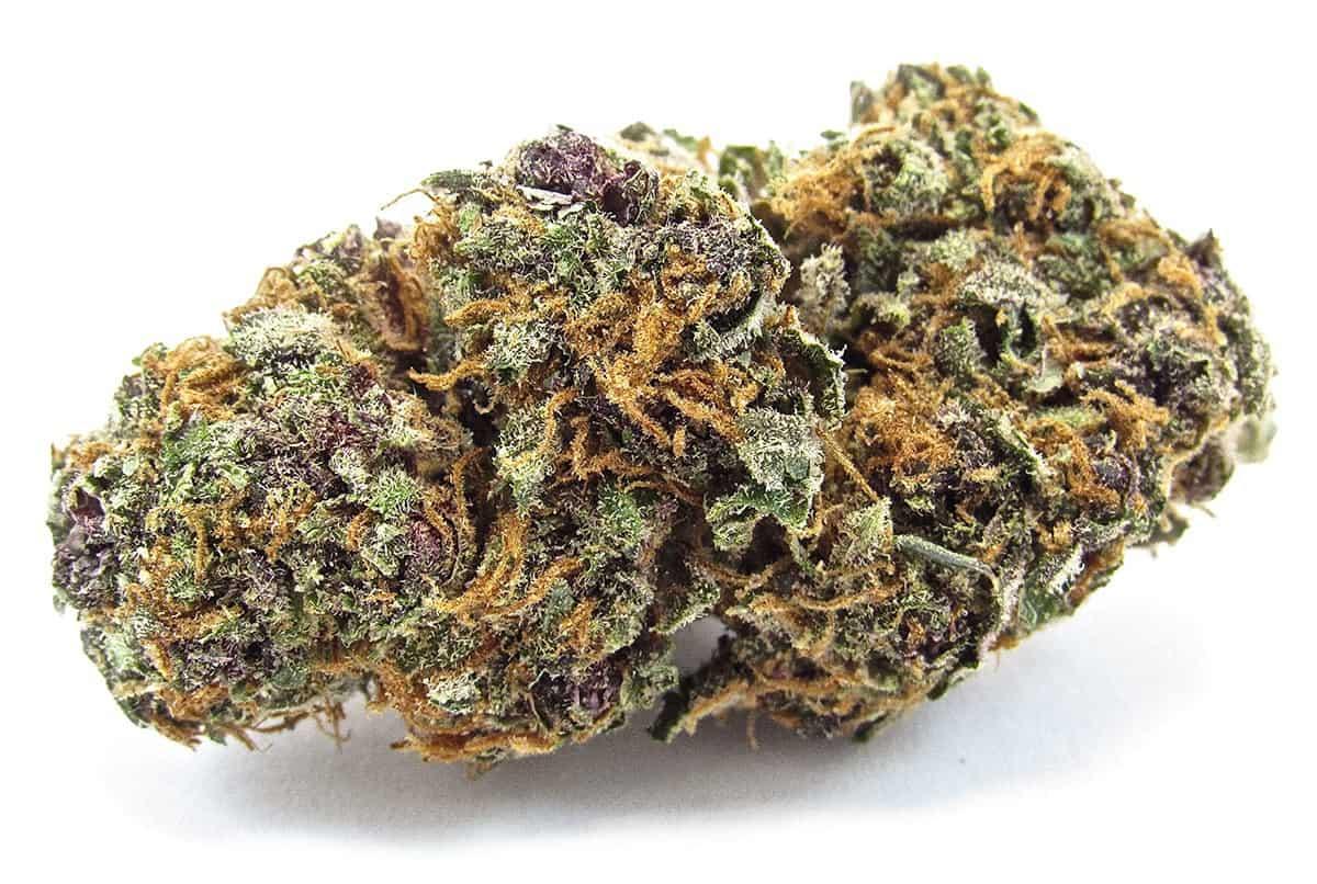 5 Best Marijuana Strains for Digestive Problems