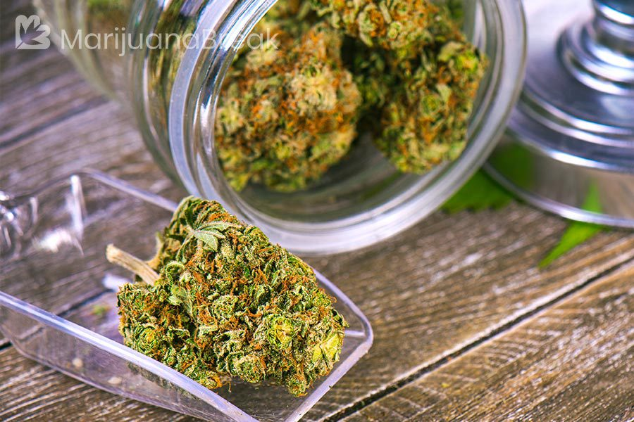 marijuana strains for shingles
