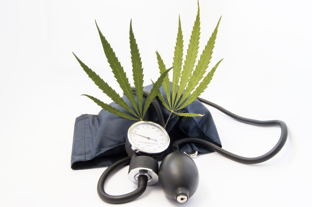 medical research on marijuana for hypertension