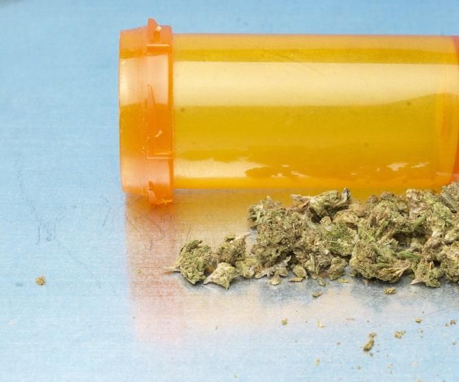 5 BestMarijuana Strains for Shingles