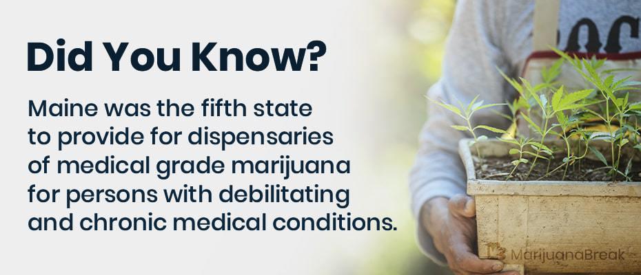 maine medical marijuana card