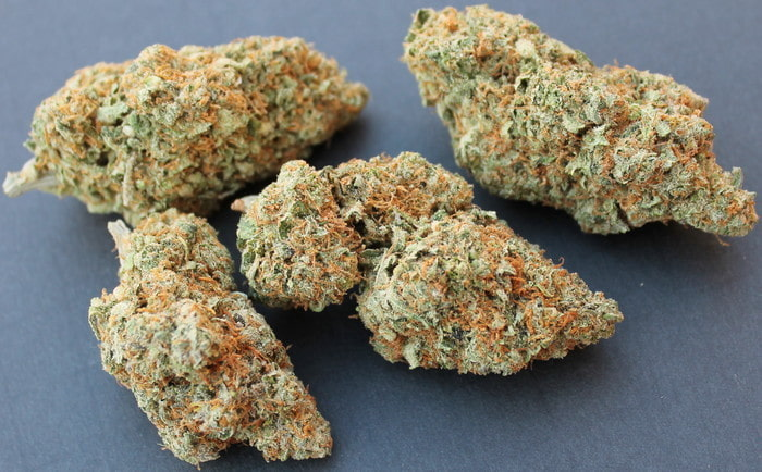 moby dick cannabis review