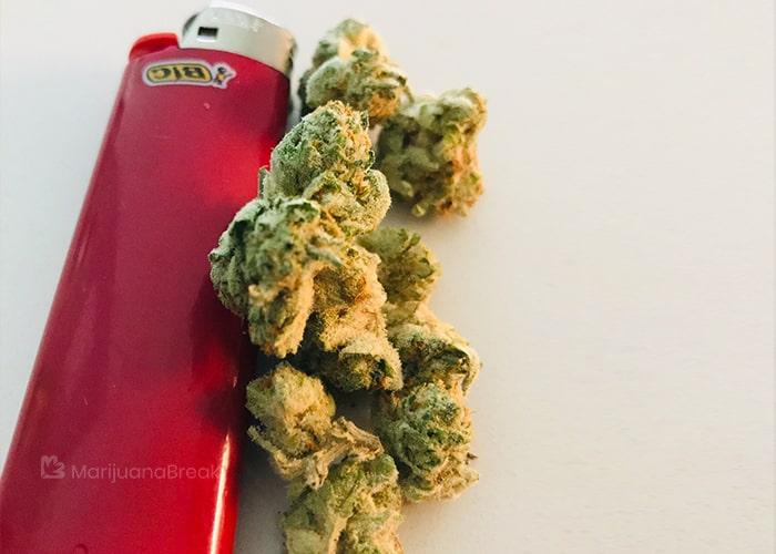 Pineapple Express marijuana