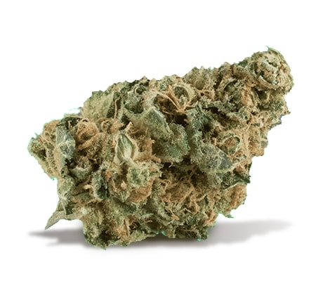 A small nug of the cannabis strain Trainwreck is on a slight angle against a white background. It is a paler green color with some orange-brown hairs.